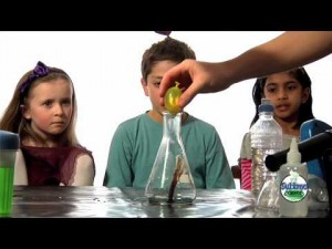 Primary School Science Curriculum