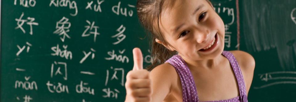 primary chinese tuition